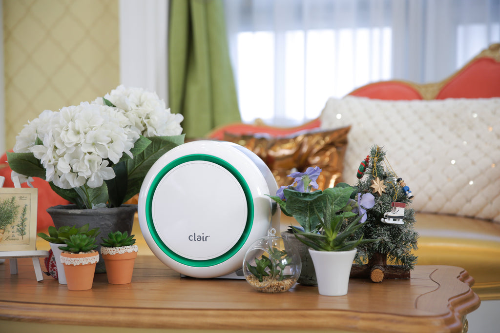 Clair-BF2025 Air Purifier, Air Cleaner - Mint with plants