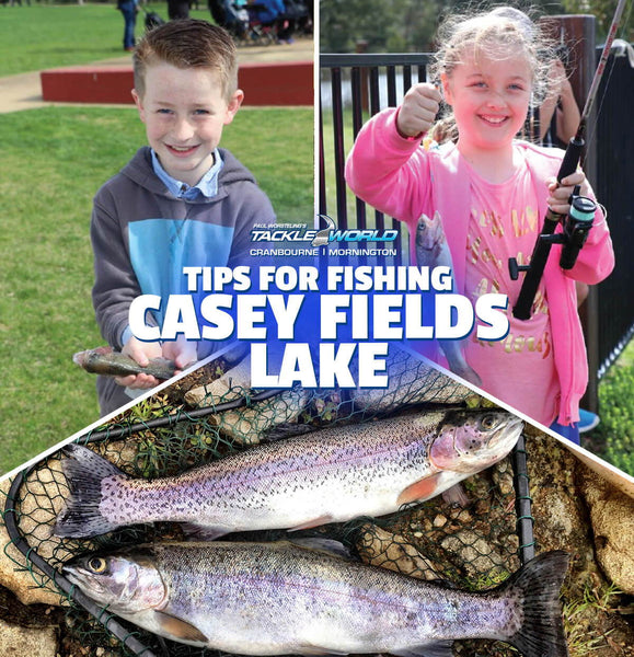 Tips for fishing Casey Fields Lake for Rainbow Trout