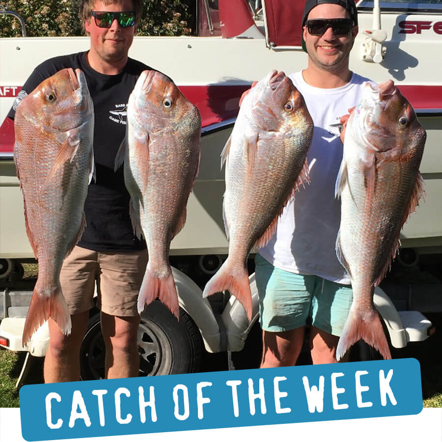 Catch of the Week