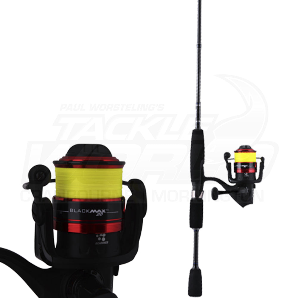 Abu Garcia Salty Fighter / Black Max Spin Combo