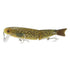 products/tr-murray-cod-new.jpg