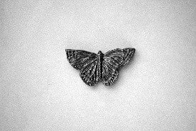 Curio Butterfly Graphite