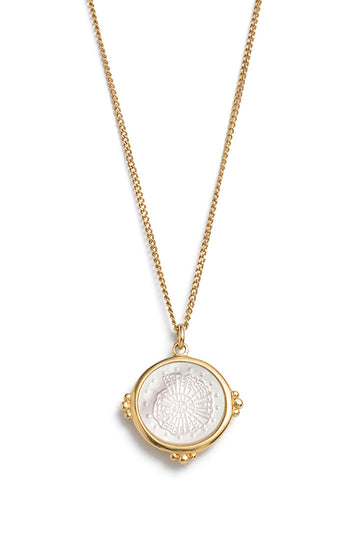 Fossil Shell Necklace - Gold