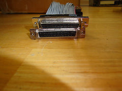 SCSI II External Case adapter for SCSI Narrow Drives - Micro Technologies (yourdrives.com)