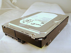 Seagate Constellation ES 2TB 7200RPM ST32000644NS 9JW168-502 Int Hard Drive - Micro Technologies (yourdrives.com)