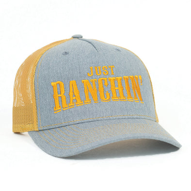 Just Ranchin Silver & Gold Mesh Precurved