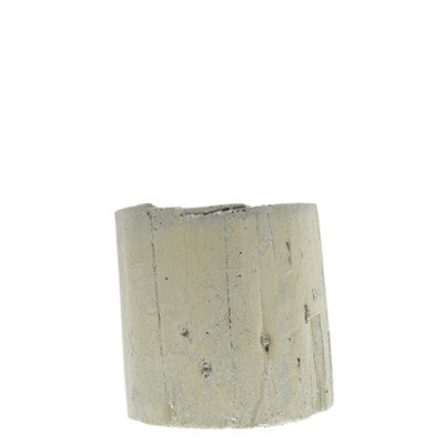 Eucalyptus Cast Cement Container | Small