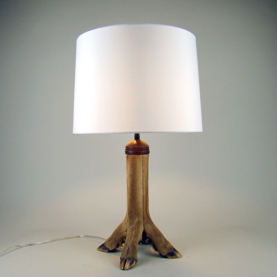 Deer Hoof Taxidermy Lamp