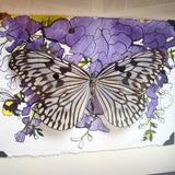 Rice Paper Prince Butterfly Frame