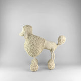 MonkeyBiz Cream Medium Poodle
