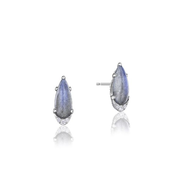Horizon Shine Earrings Style #SE25046