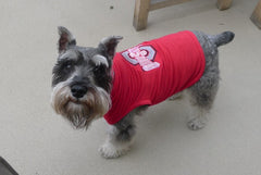 Dog in Ohio State University Shirt