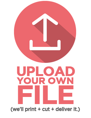 Upload Your Own File