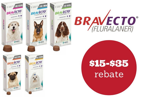 Bravecto™ for Dogs