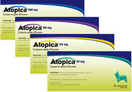Atopica® for Dogs