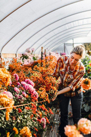 5 Things: Erin Benzakein of Floret Flower Farm