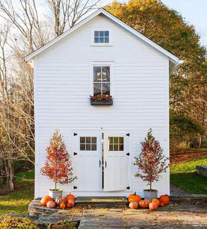 Feeling Festive: Chic Halloween Decor