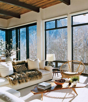 Ski lodge inspiration...