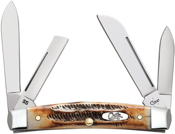 Case XX Congress Bone Stag Brown Jigged Folding Pocket Knife