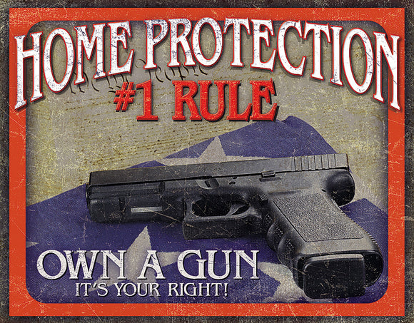 Home Protection #1 Rule Own a Gun 2nd Amendment Right Metal Tin Sign 2130