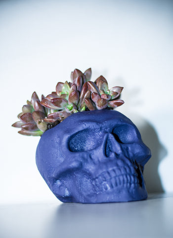 Purple-Skull-Decoration