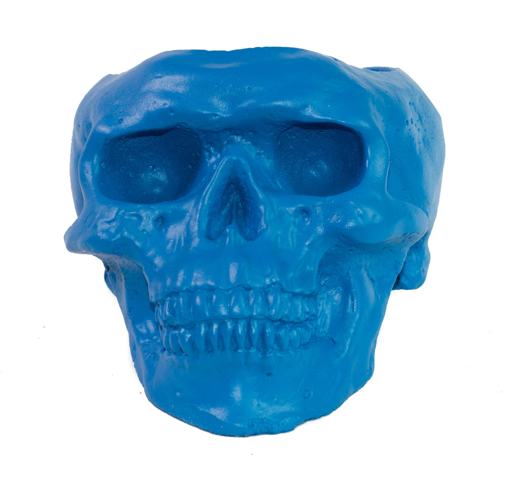 Skull Holder - Plants Candles - Blue