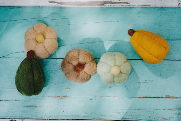 Felt Harvest Gourds - Set of 5
