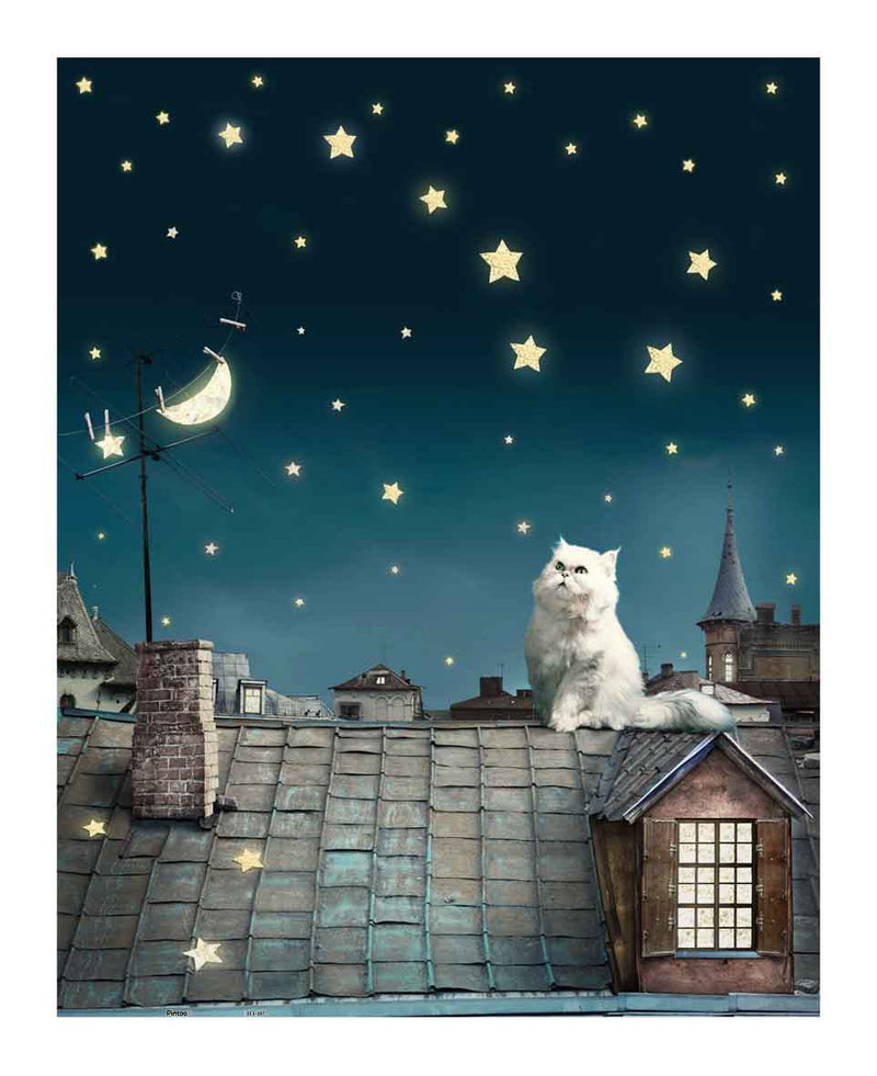 Cat on the roof top Jigsaw Puzzle (500 pieces) - Pintoo