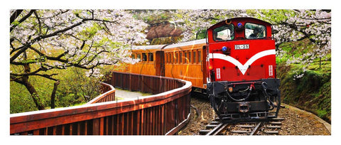 Forest Train in Alishan National Park, Taiwan