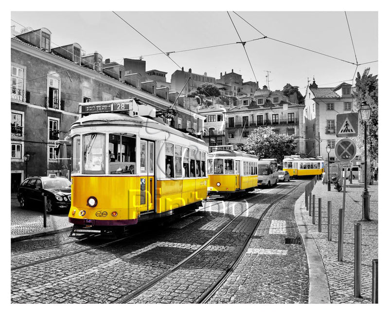 Yellow Trams in Lisbon Pintoo Jigsaw Puzzle