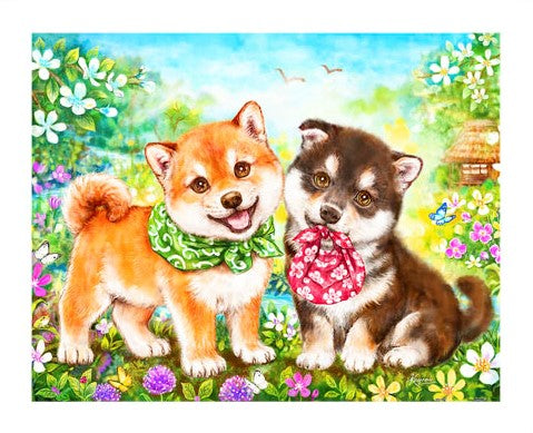 500 pieces - Kayomi - Shiba Puppies' First Errand