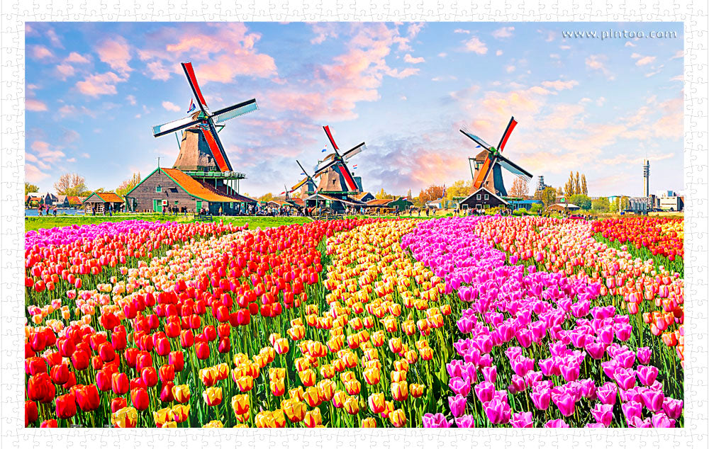 1000 pieces - Zaanse Schans, Netherlands