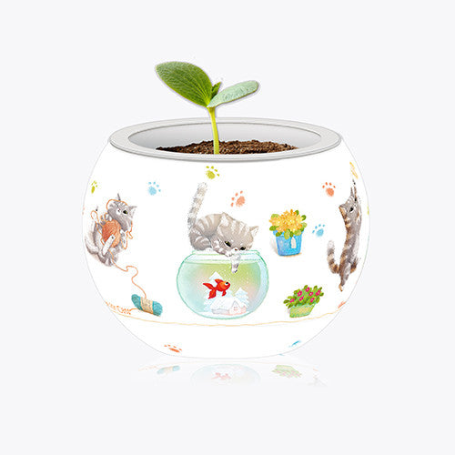 K1014 Pintoo Flowerpot Jigsaw Puzzle - Cat's Play Time