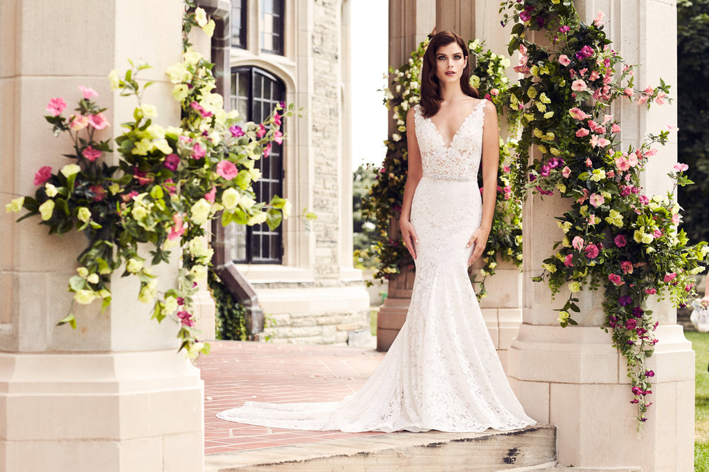 Last Paloma Blanca Trunk Show of 2017 - Book Now!