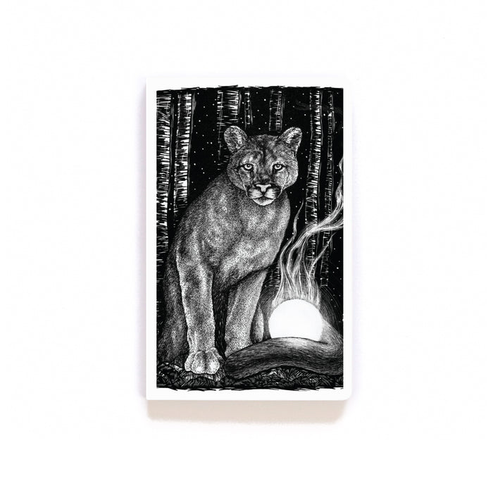 Celestial Hunter Softcover Notebook