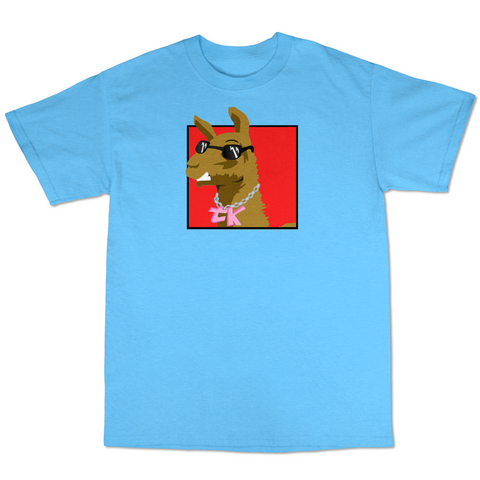 WayTooManyLlamas Rainbow T shirt  ( Light Blue T shirt Red Logo  )