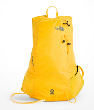 The North Face - Rapidus 20 Pack