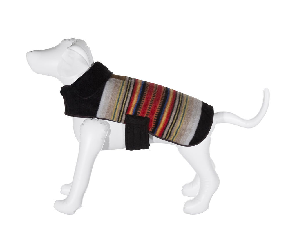 Pendleton Acadia National Park Dog Coat