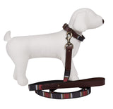 Pendleton Acadia National Park Explorer Leather Dog Collar and Leash