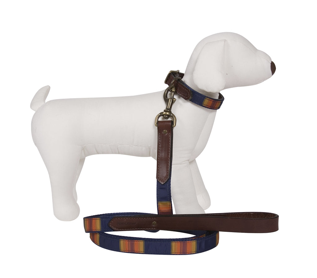 Pendleton Grand Canyon National Park Explorer Dog Leash and Collar
