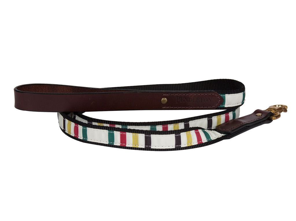 Pendleton Glacier National Park Explorer Dog Leash