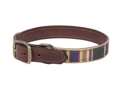 Pendleton Badlands National Park Explorer Leather Dog Collar