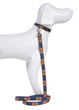 Pendleton Grand Canyon National Park Hiker Dog Leash and Collar