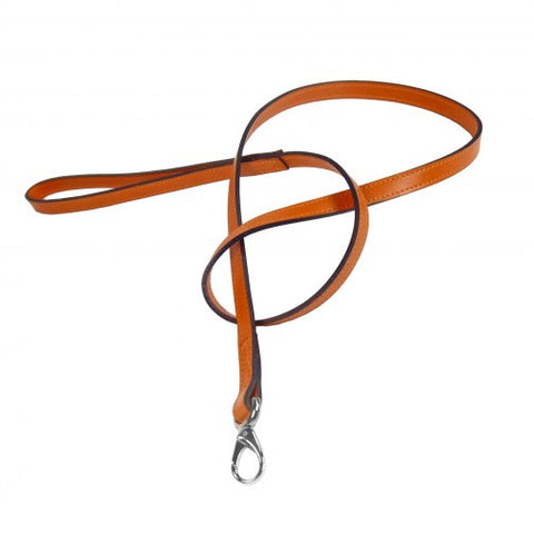 After Eight Dog Leash - Tangerine