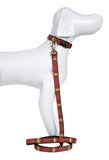 Pendleton Ranier National Park Hiker Dog Collar and Leash