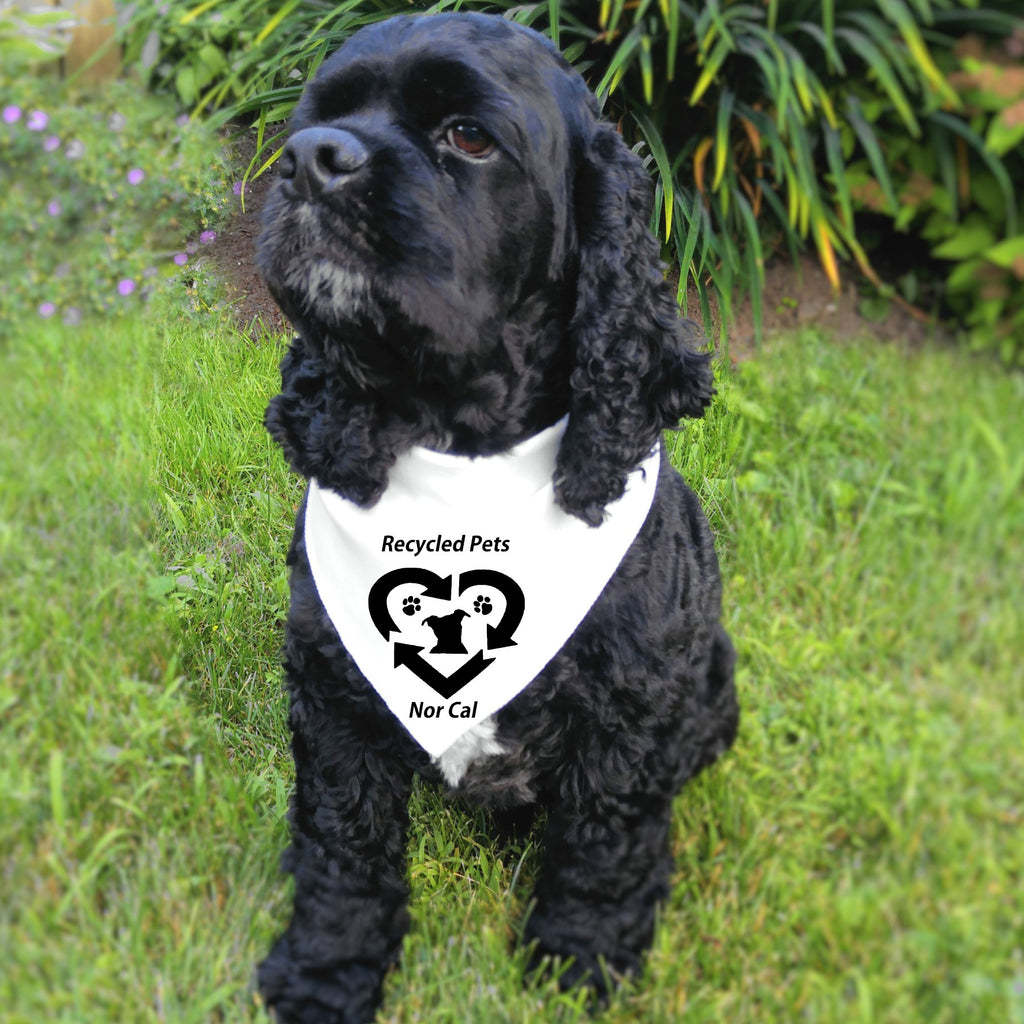 Recycled Pets NorCal Doggie Bandana - Ruff Life Rescue Wear