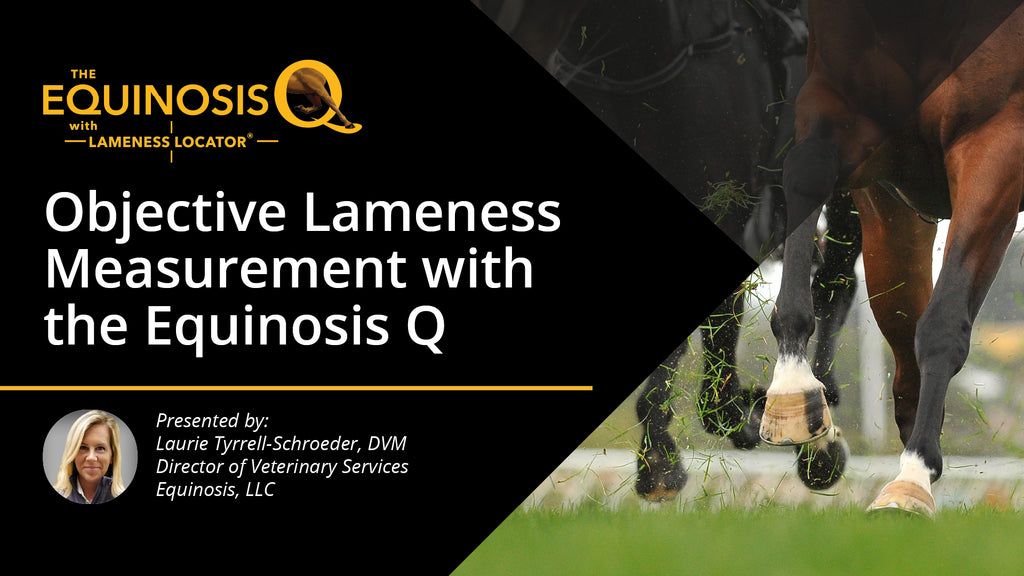 Informational Webinar: Objective Lameness Measurement with the Equinosis Q