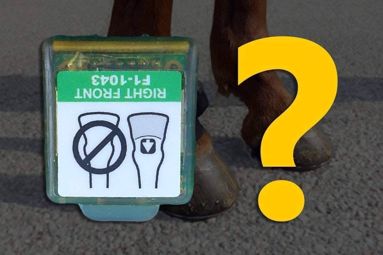 FAQ: Can the Pastern Sensor Be Worn on A Different Limb or Location on the Right Forelimb?