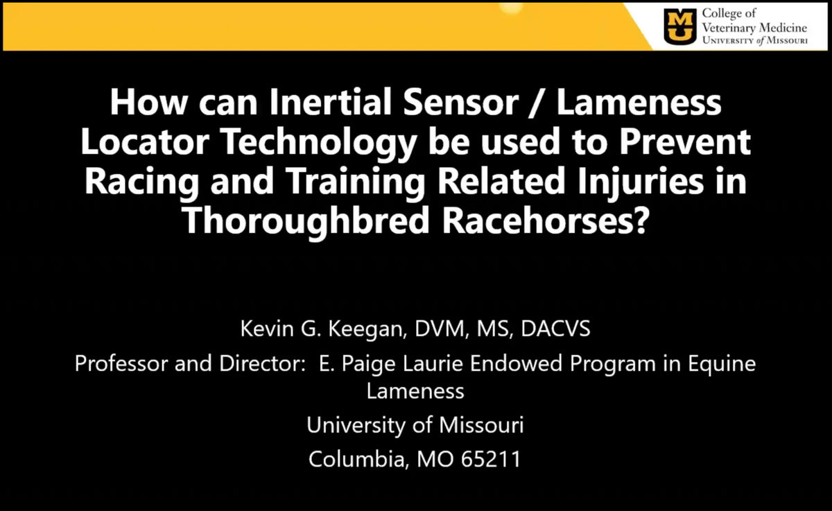 Lameness Measurement in Thoroughbred Racing