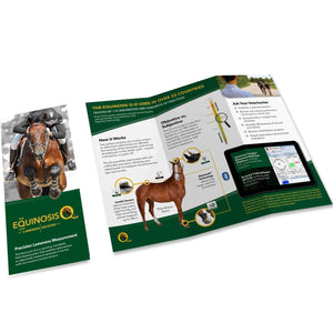 Equinosis Information Equinosis Q Client Brochure Download